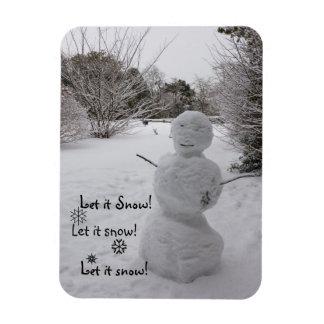 ¡Dejáis le nevar! Iman Flexible