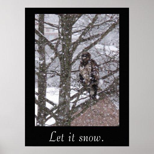 Dejáis le nevar póster