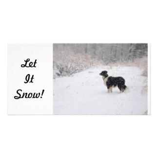 ¡Dejáis le nevar Tarjeta de la foto Plantilla Para Tarjeta De Foto