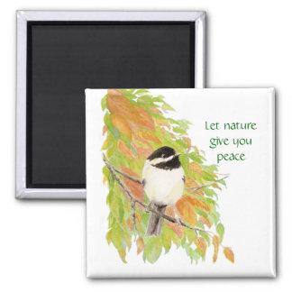 Deje la naturaleza darle la paz, Chickadee del oto Imán Cuadrado