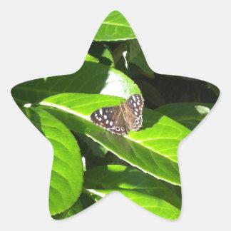 Deje la naturaleza mostrarnos la manera pegatina forma de estrella personalizadas