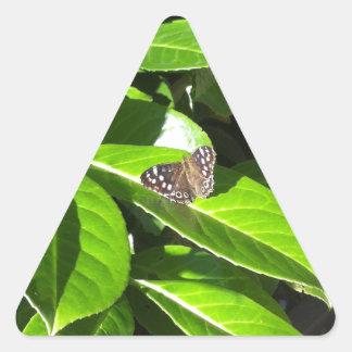 Deje la naturaleza mostrarnos la manera pegatina triangular