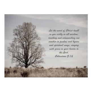 Deje la palabra de Cristo morar en usted rico en t Tarjetas Postales