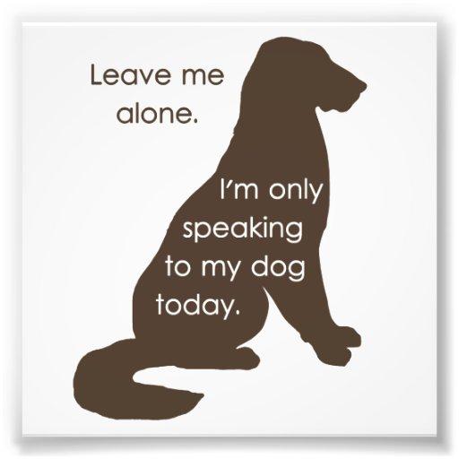 Déjeme me solo están hablando solamente a mi perro impresiones fotograficas