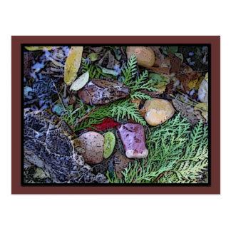 del arte del piso del bosque tarjeta postal