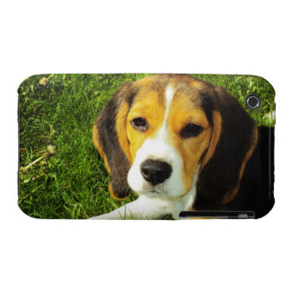 Del beagle del perrito caso del iPhone 3G/3GS de T Case-Mate iPhone 3 Protector