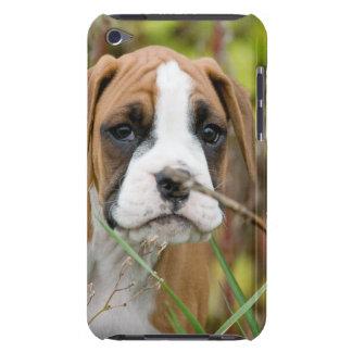 Del boxeador de perrito del perro caso inocente barely there iPod coberturas