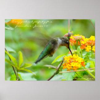 ~ del colibrí cada regalo bueno y perfecto… póster