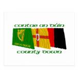 Del condado banderas abajo postal