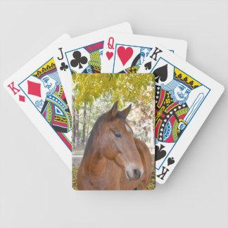 del disparador el caballo increíble del rescate barajas