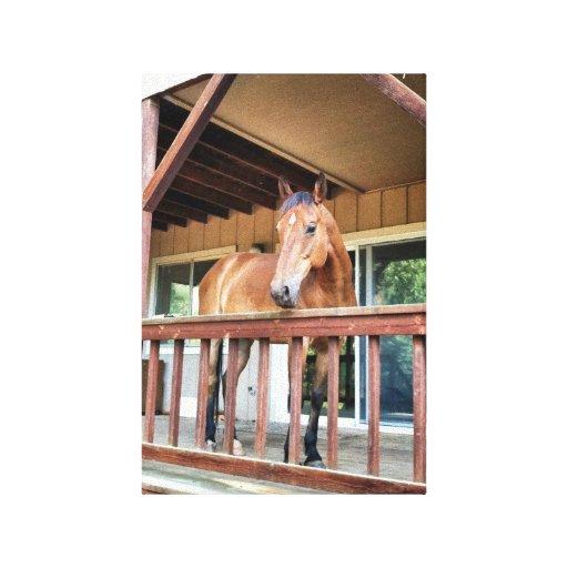 ~ del disparador el caballo increíble del rescate lienzo envuelto para galerias
