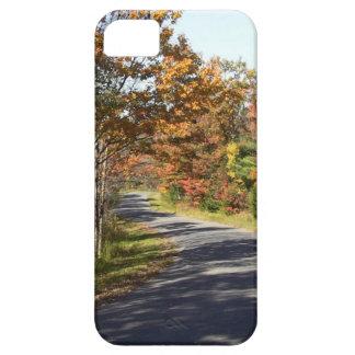 Del follaje de otoño caso del iphone de la funda para iPhone SE/5/5s