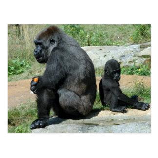 Del gorila del tiempo postal hacia fuera