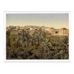 Del jardín, Jaffa, Tierra Santa, (es decir Israel) Tarjetas Postales