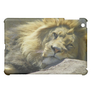 Del león cierre para arriba
