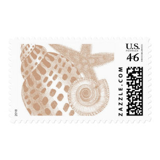 Del Mar A by Ceci New York Stamp