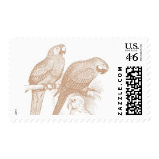 Del Mar C by Ceci New York Postage Stamp