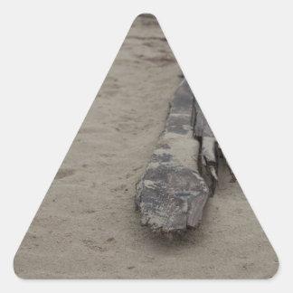 Del mar pegatina triangular