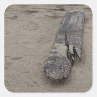 Del mar colcomania cuadrada