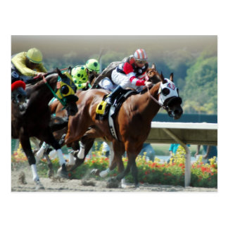 Del Mar Racetrack Postcard