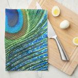 Del pavo real todavía de la pluma vida azul reluci toallas