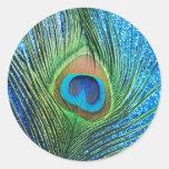 Del pavo real todavía de la pluma vida azul reluci etiqueta