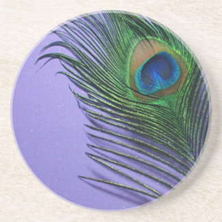 Del pavo real todavía de la pluma vida púrpura en  posavaso para bebida
