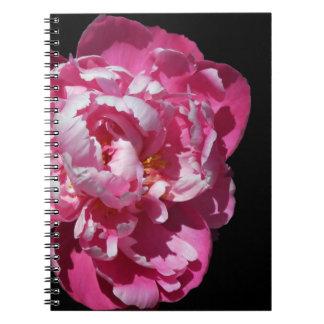 Del Peony floración rosada deliciosa solamente Libro De Apuntes Con Espiral