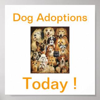 Del perro de las adopciones muestras hoy póster