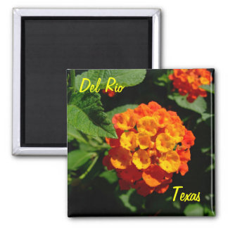 Del Rio Texas Magnet Lantana flower
