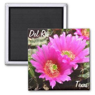 Del Rio Texas souvenirs pink cactus flower Refrigerator Magnet