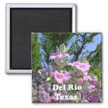 del rio texas souvenirs purple sage 2 inch square magnet