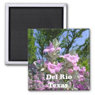 del rio texas souvenirs purple sage fridge magnet