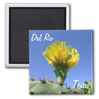Del Rio Texas souvenirs yellow cactus flower. 2 Inch Square Magnet