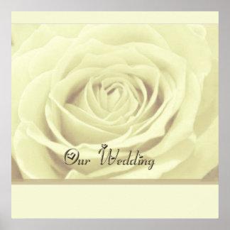 ~ del rosa blanco nuestro POSTER de la HUÉSPED del