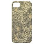 Del vintage cajas del teléfono de Raphaelite iPhone 5 Case-Mate Funda