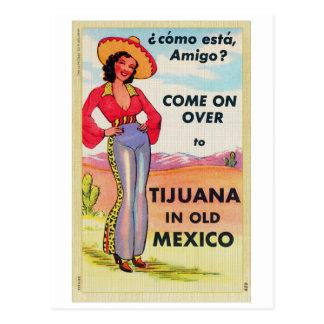 Del vintage viejo México Pin de la postal de Tijua