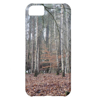 Delamere Forest Wetland Case For iPhone 5C