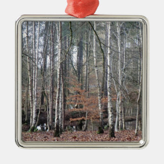 Delamere Forest Wetland Square Metal Christmas Ornament