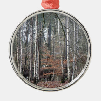 Delamere Forest Wetland Round Metal Christmas Ornament