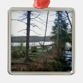 Delamere Forest Wetlands and Blakemere Moss Square Metal Christmas Ornament