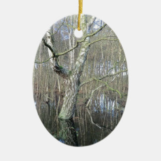 Delamere Forest Wetlands Double-Sided Oval Ceramic Christmas Ornament
