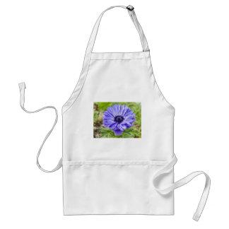 Delantal azul de la flor del aster