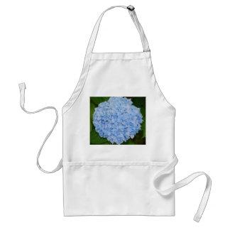 Delantal azul del Hydrangea