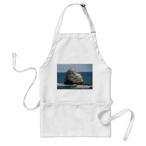 Delantal de la roca de la ballena