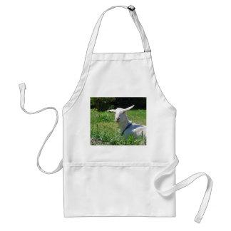 Delantal loco de la cabra de Amish
