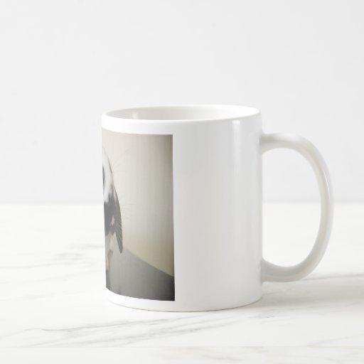 Delantal para la feria tazas de café