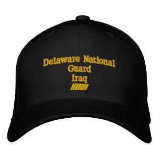 Delaware 42  MONTH TOUR Cap