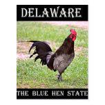 Delaware Blue Hen (Rooster) Postcard