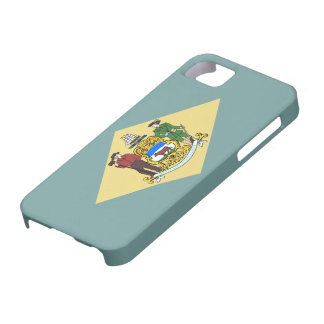 Delaware flag iPhone 5 cases